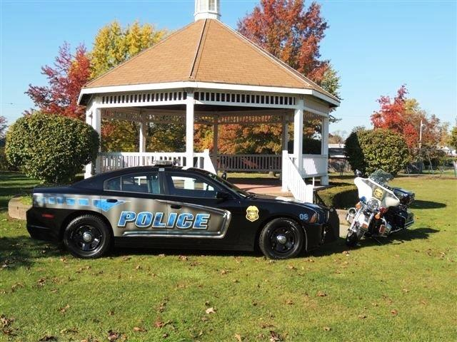 Police Car and Cruiser 2